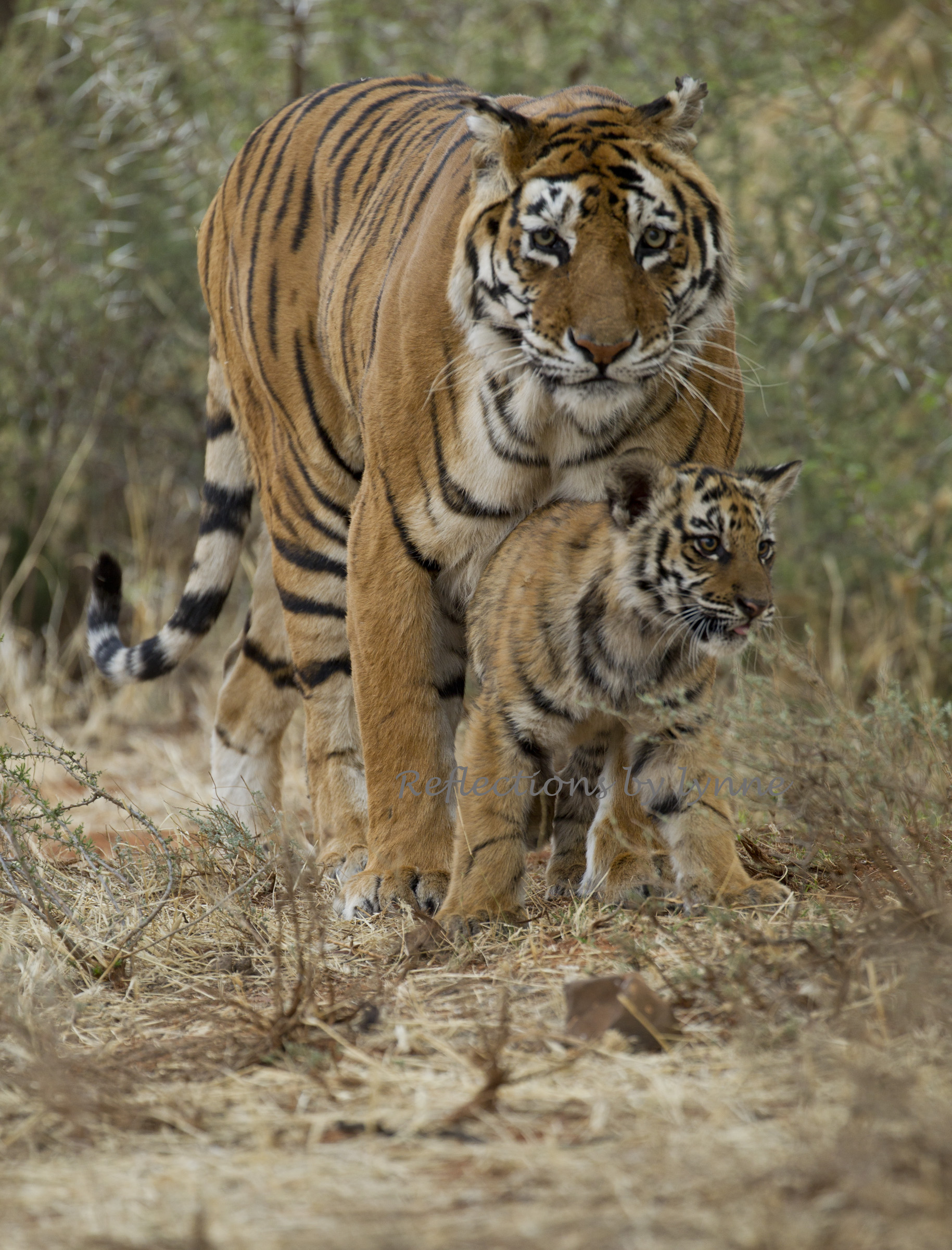 Protected by mom.jpg