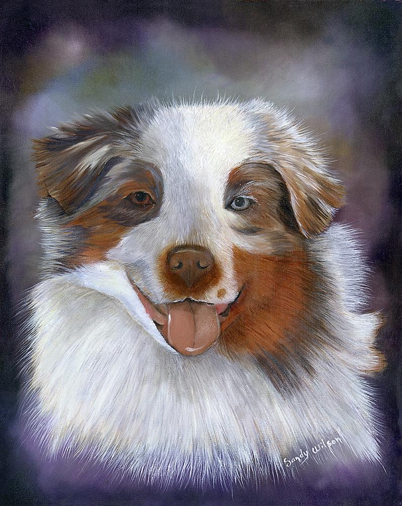 Wilson_dog_web.jpg