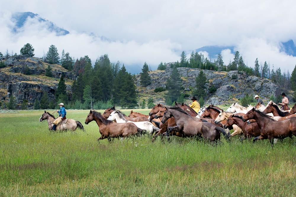 Halbert_Wyoming Office.jpg