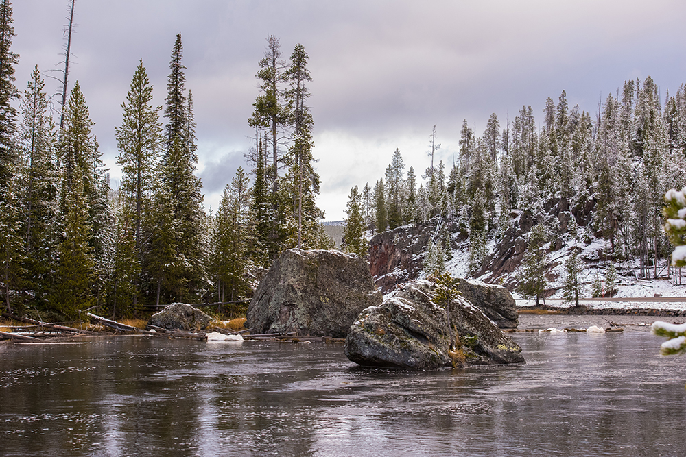 Bielawski_First_Snow_Yellowstone_web.jpg