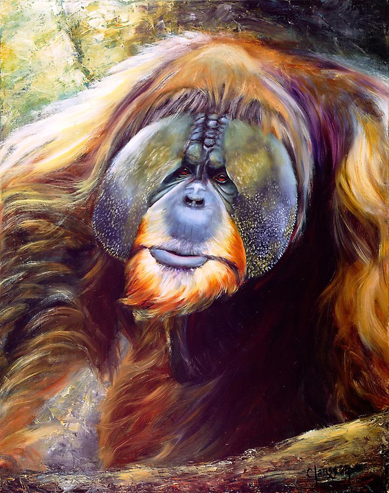 Claussen_Orangutan_web.jpg