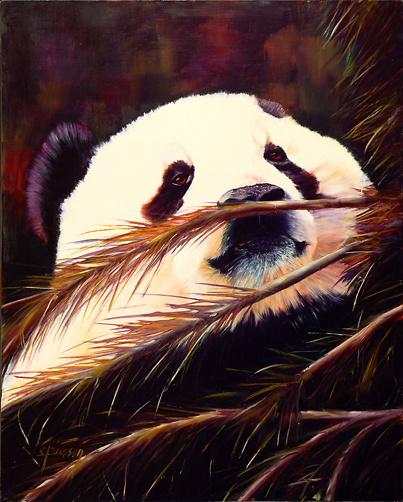 Claussen_Panda_web.jpg