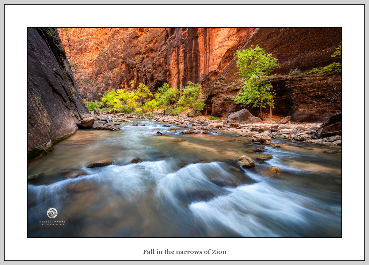 Parks_Fall in the narrows of Zion.jpg