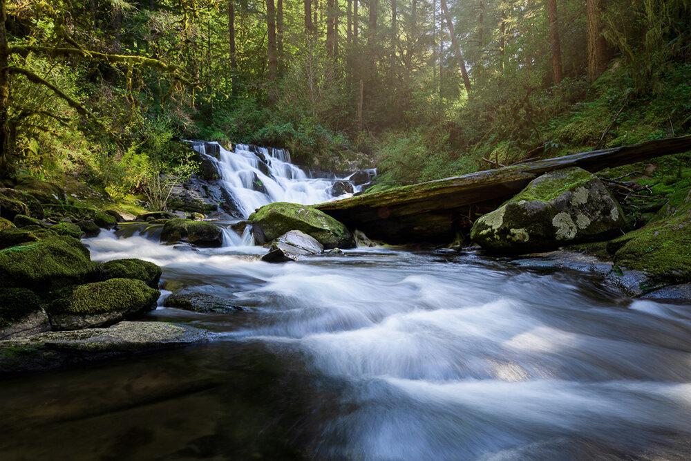 Halbert_Beaver Creek Falls_web.jpg