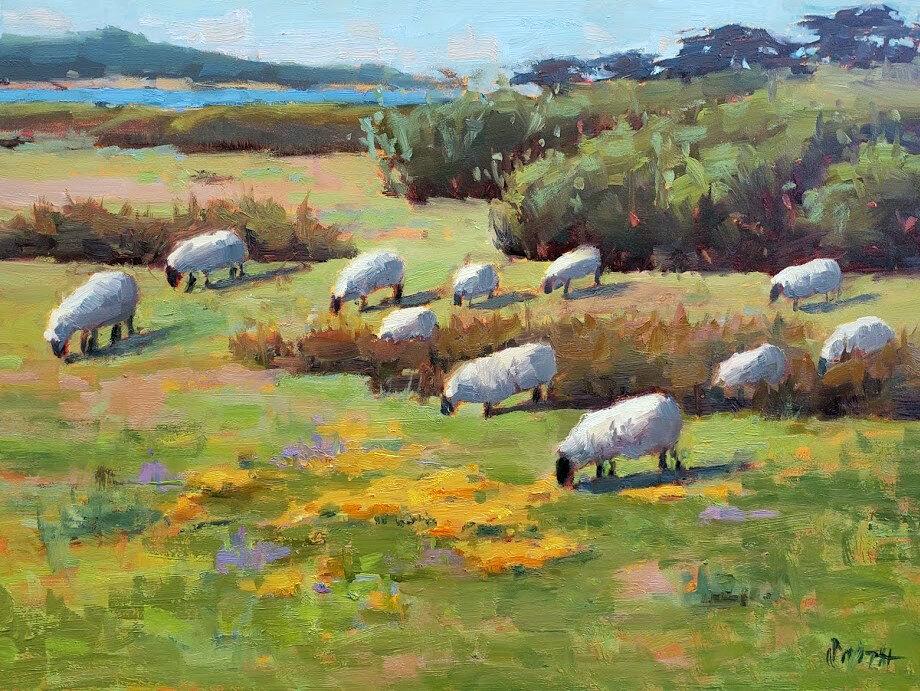 Smith, Mission Ranch Sheep_web.jpg