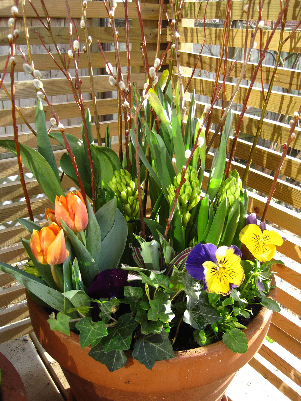 Spring-Containers---02.jpg