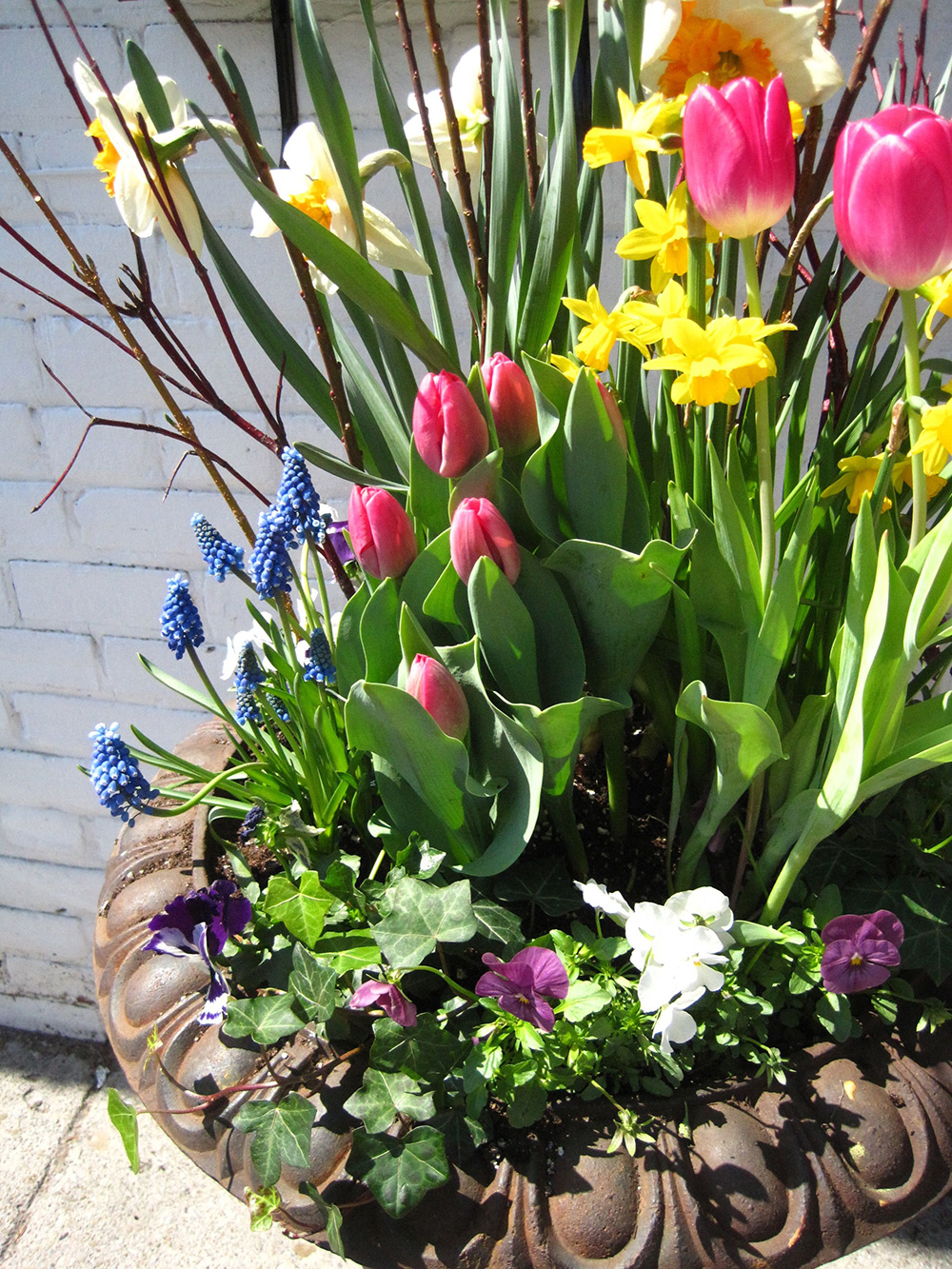 Spring-Containers---06.jpg