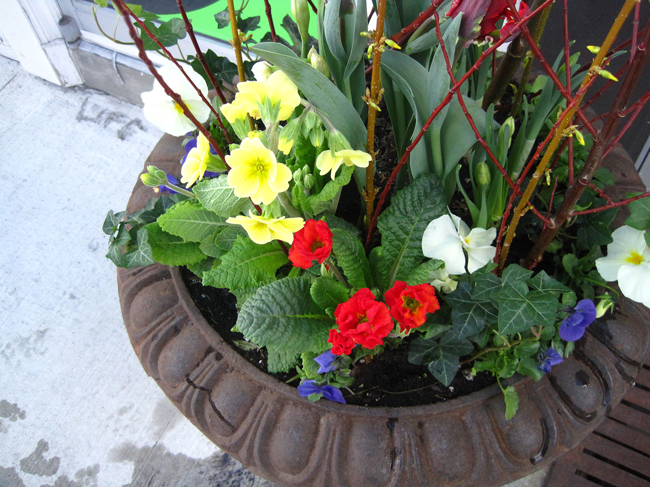 Spring-Containers---09.jpg