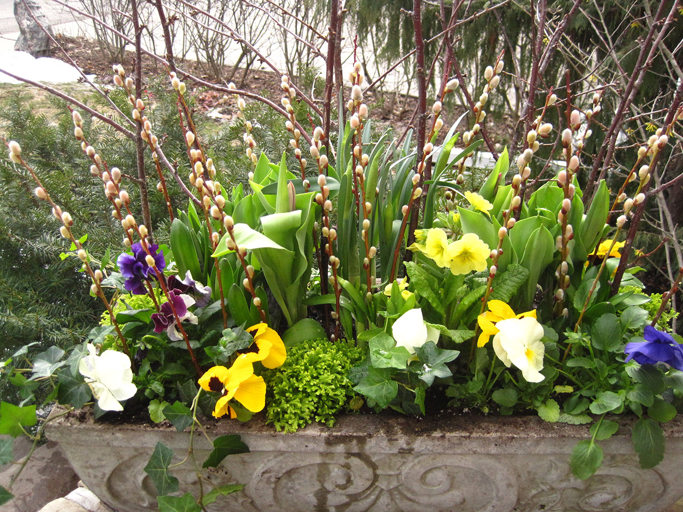 Spring-Containers---10.jpg