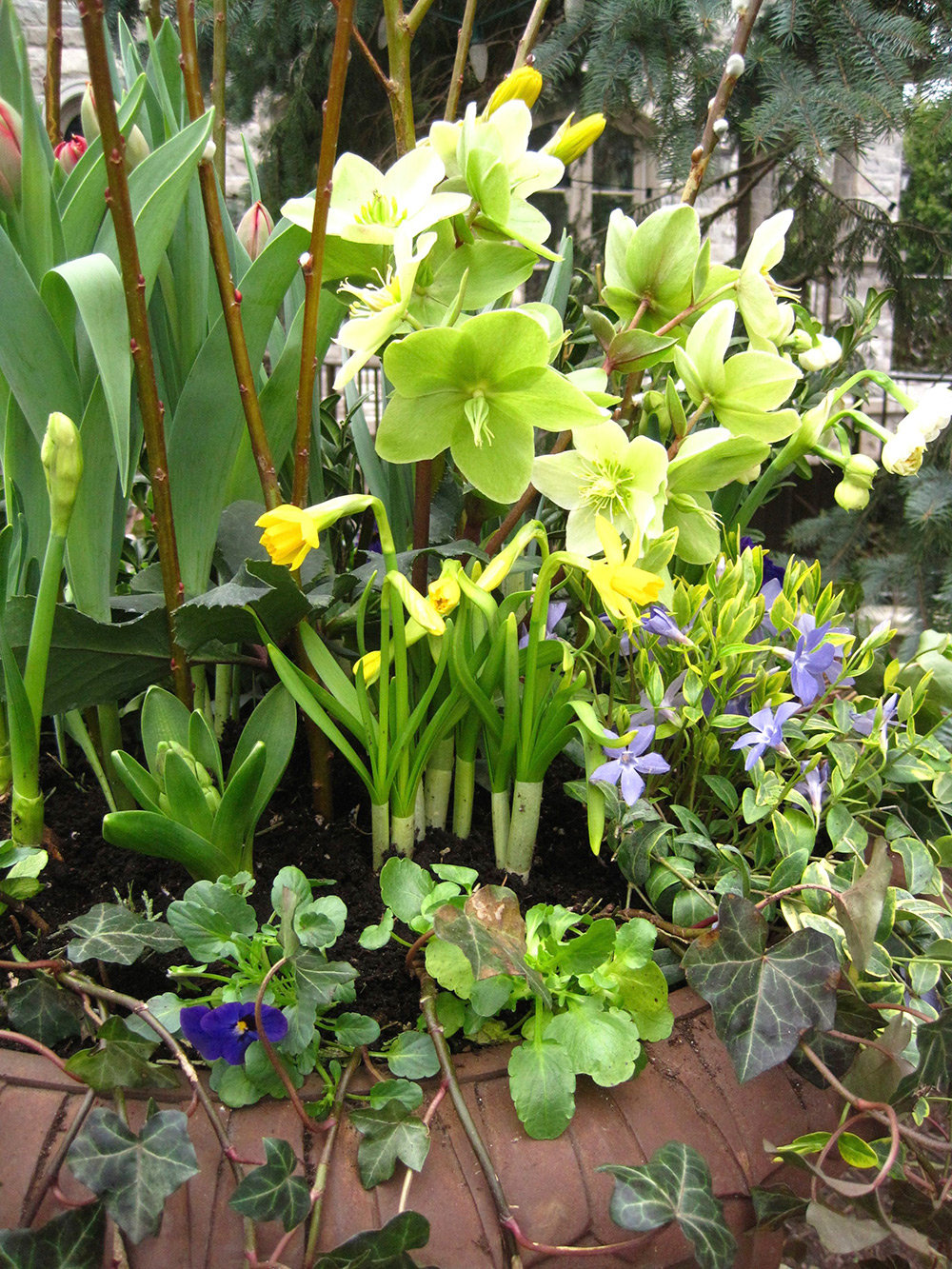 Spring-Containers---07.jpg