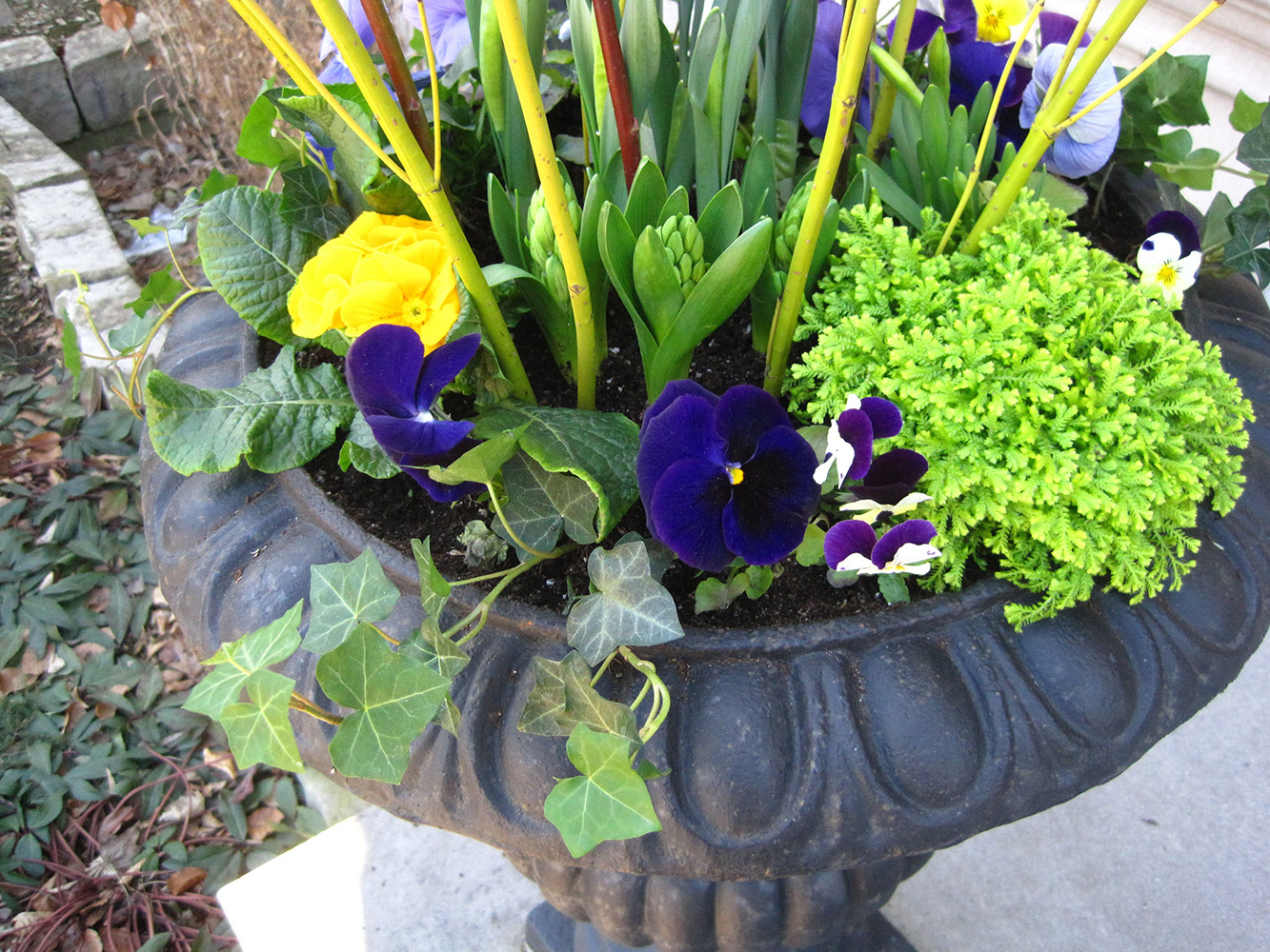 Spring-Containers---11.jpg