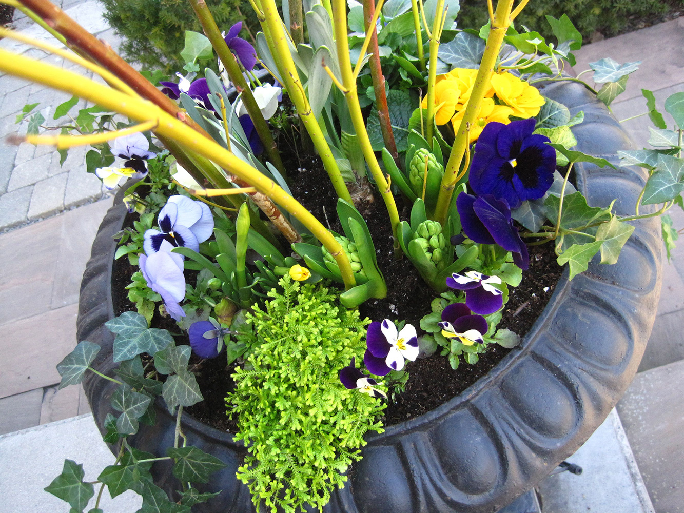 Spring-Containers---12.jpg