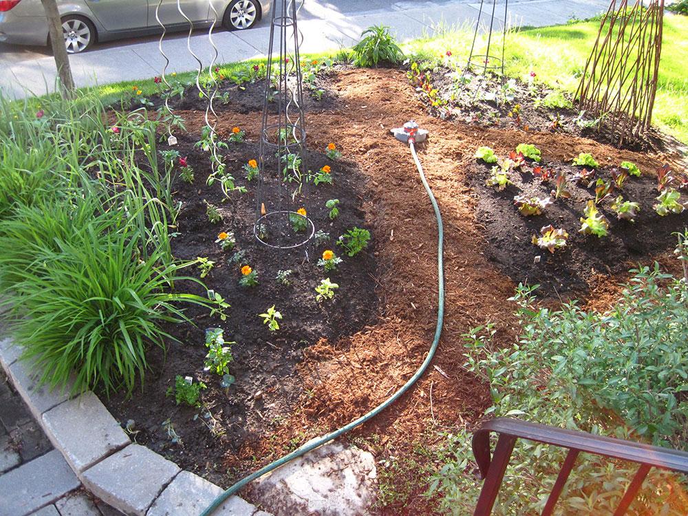 Vegetable-Garden---08.jpg
