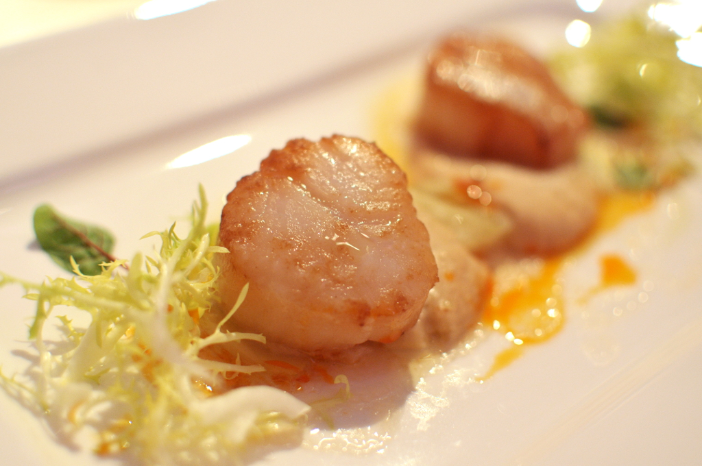Seared scallops in fennel purée and lemon oil