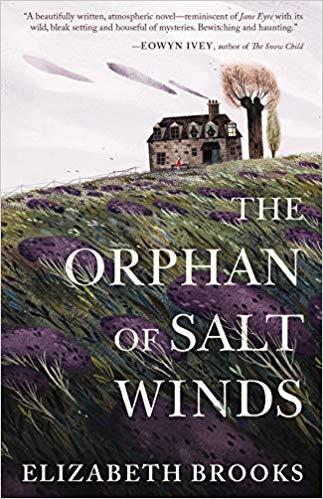 Mountain Misery: A Mud Lane Book