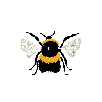 I love the Bumblebee because he believes he can fly so he does!