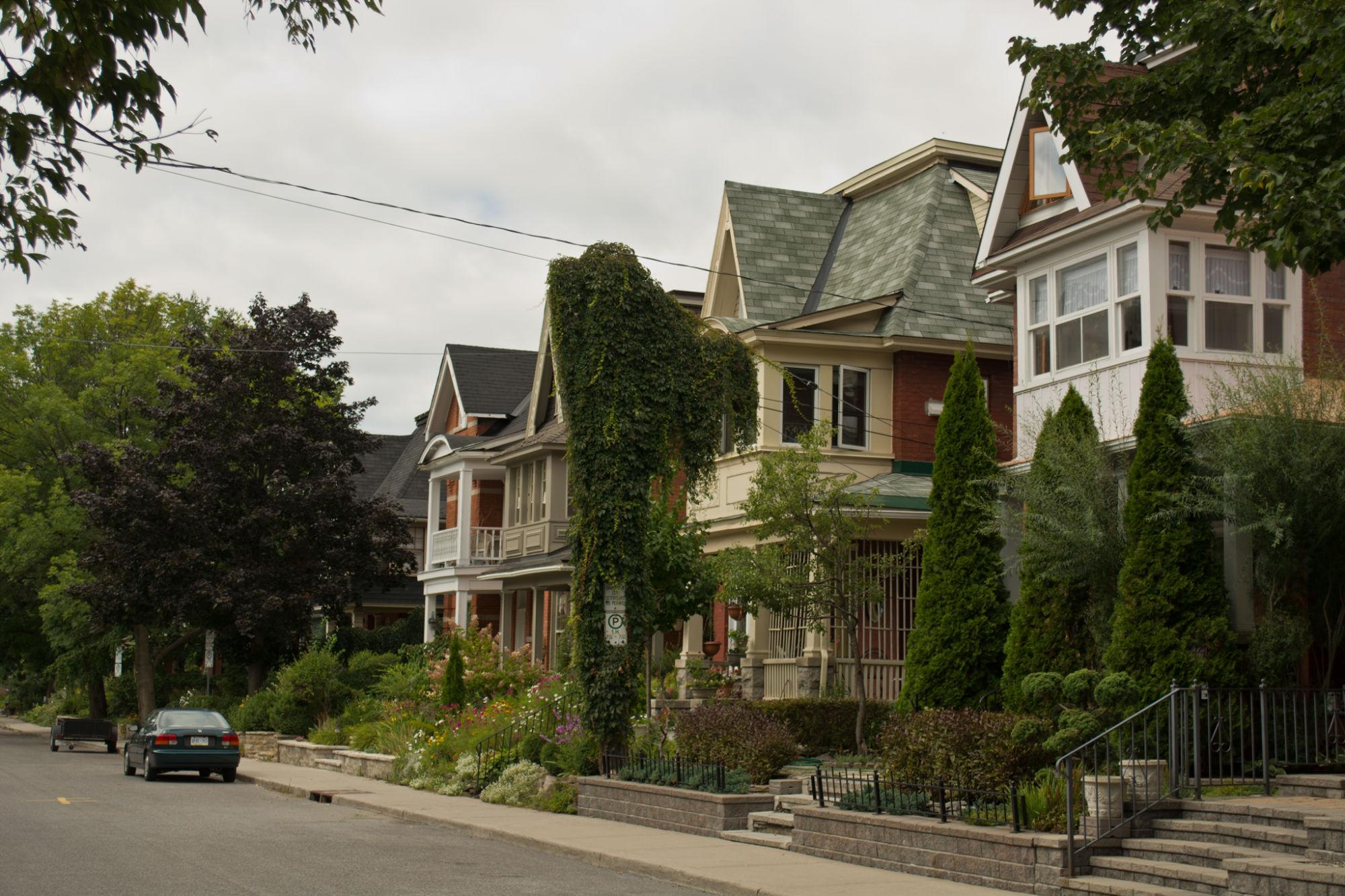My neighborhood in Ottawa -- so cozy and quiet!