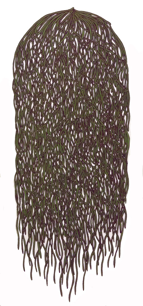Bunch #7 (green/purlple)
