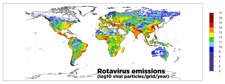 This is a map of fecal viruses across the globe. Red shades indicate severe concentrations of the deadly rotavirus.