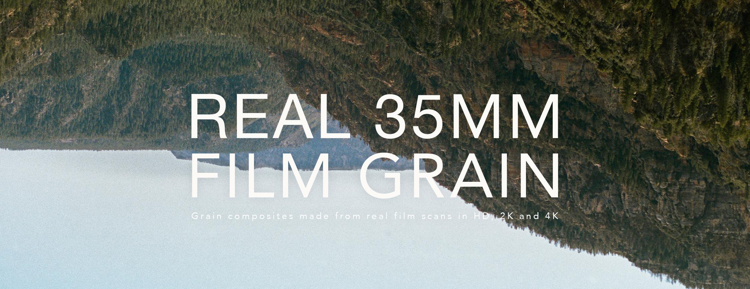 Free real 35mm film grain download.jpg