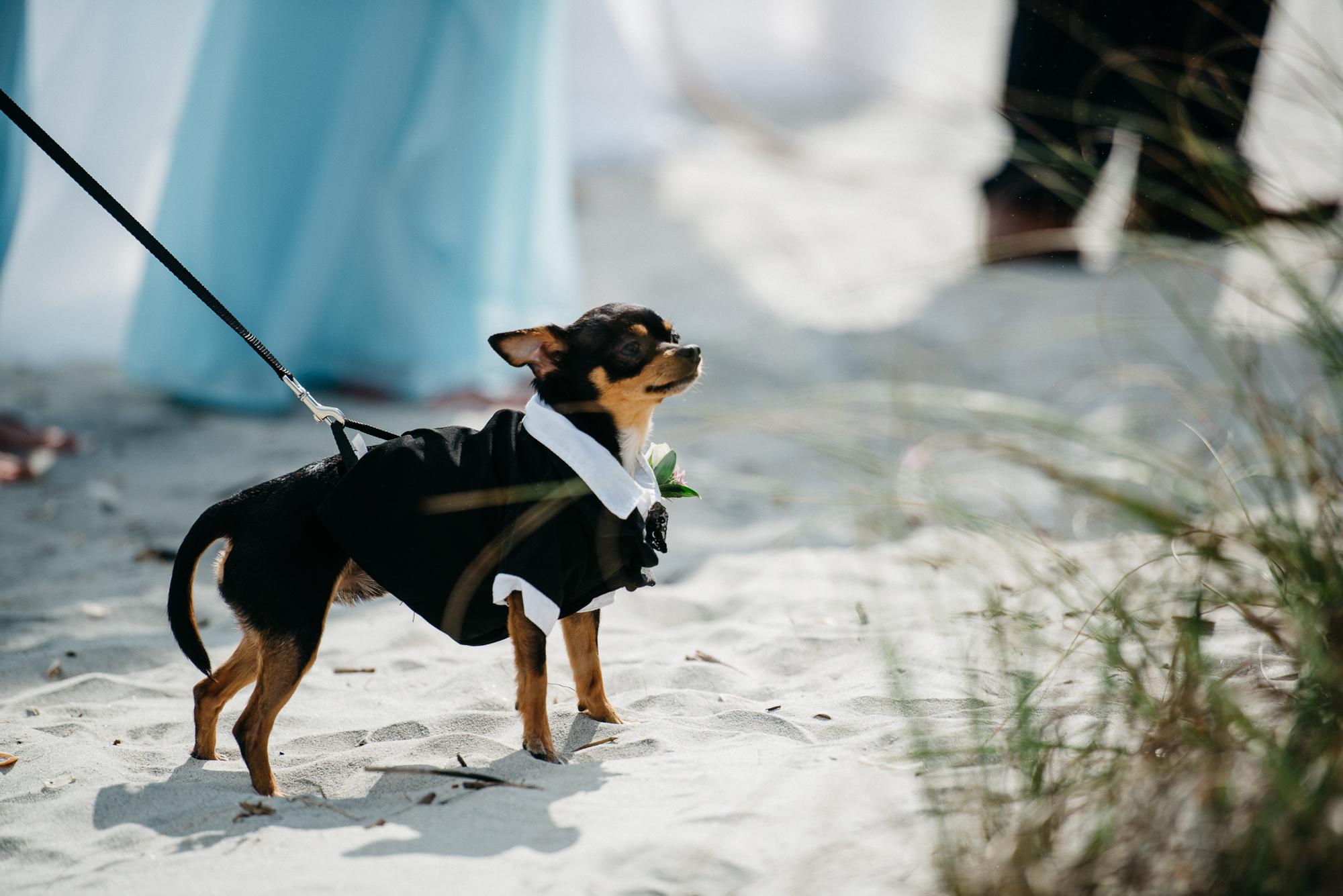Trisha-Pat-wedding-blog-17.jpg