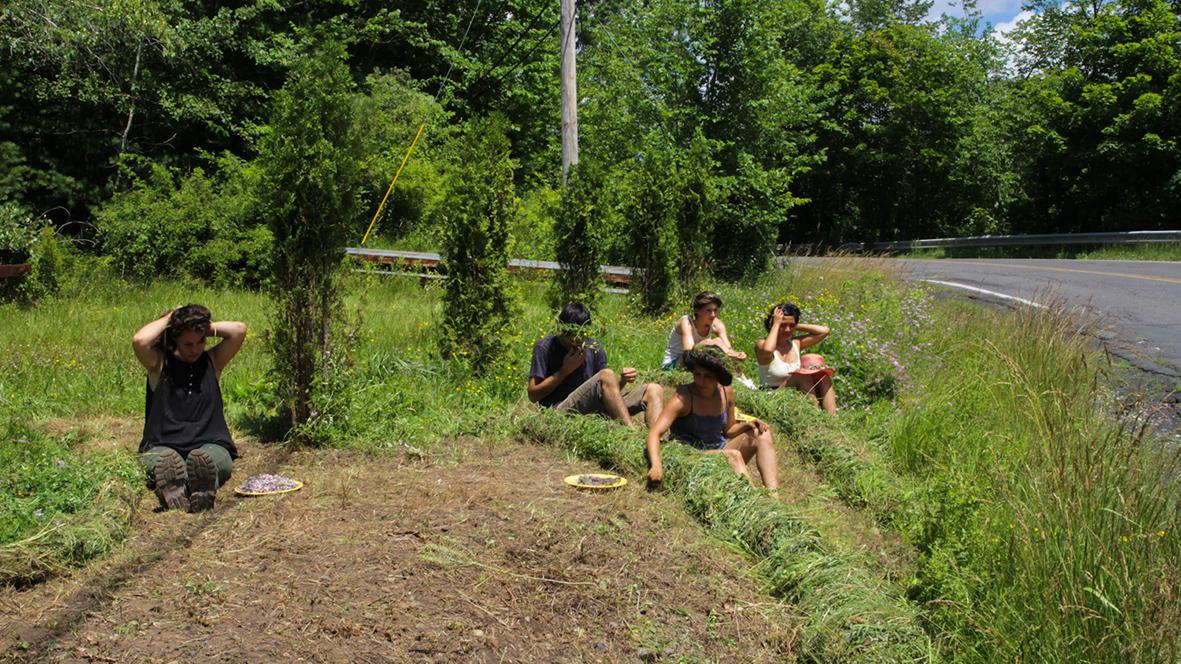 field_outside_grass_work.jpg