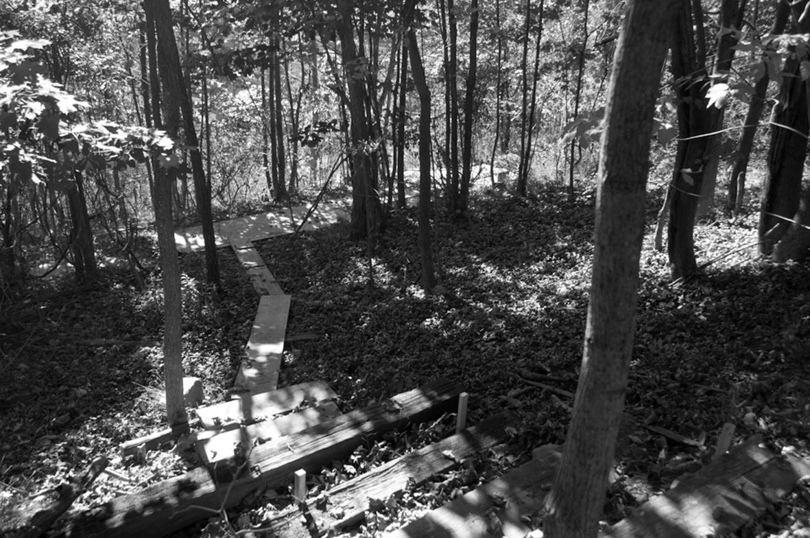 path_outside_steps_stair_04.jpg