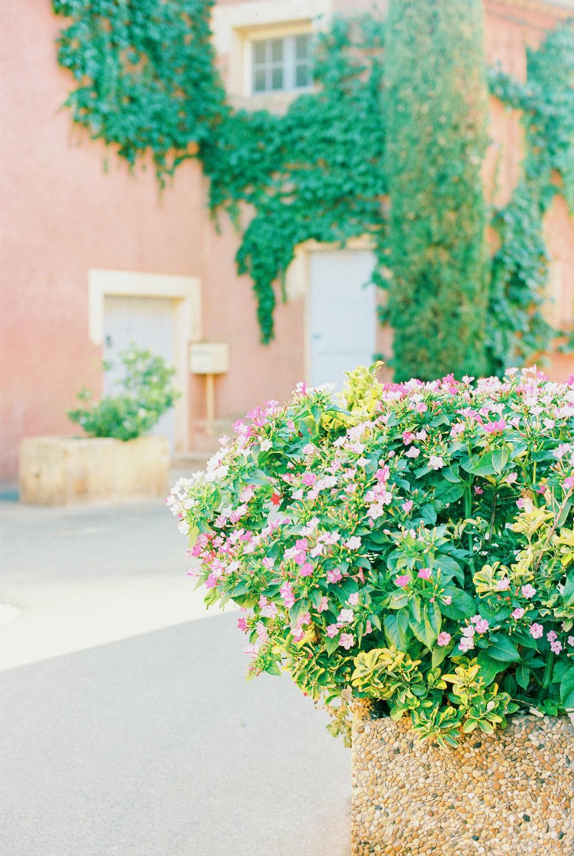 Anna_Provence2016-211OK.jpg