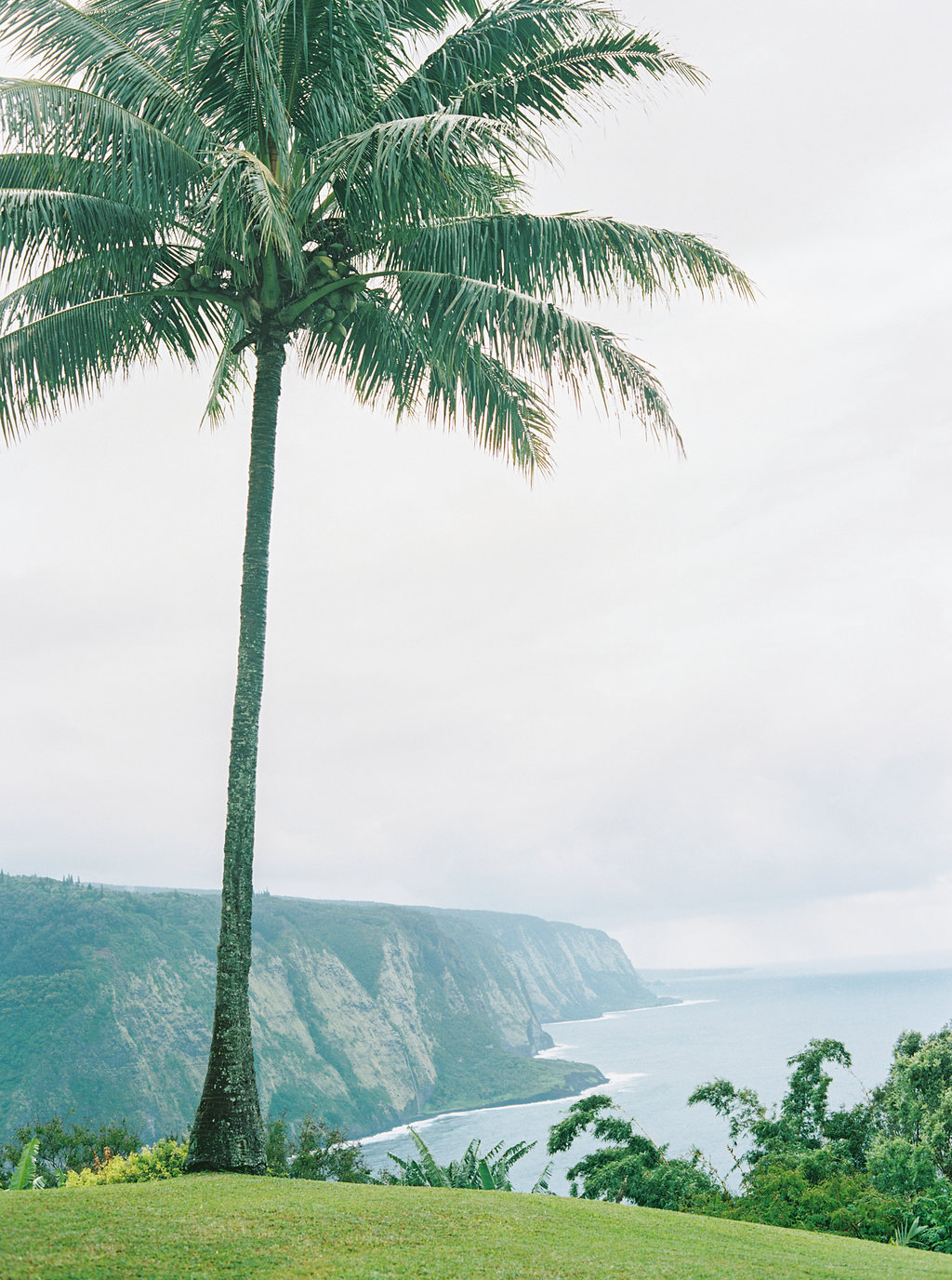 Hawaii Engagement Inspiration from Cottage Hill-2012.jpg