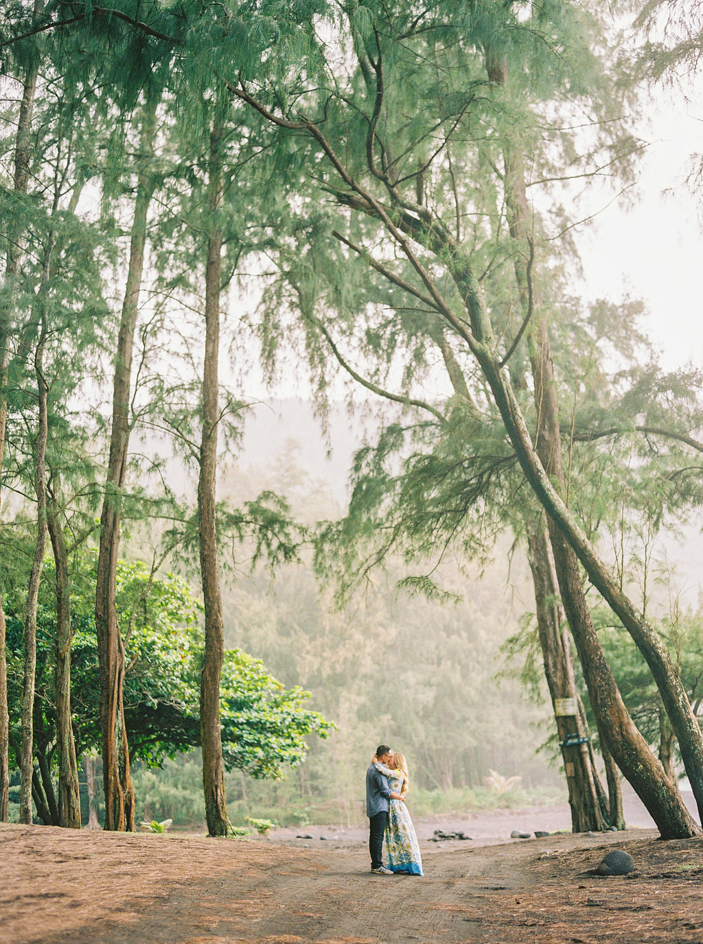 Hawaii Engagement Inspiration from Cottage Hill-2011.jpg