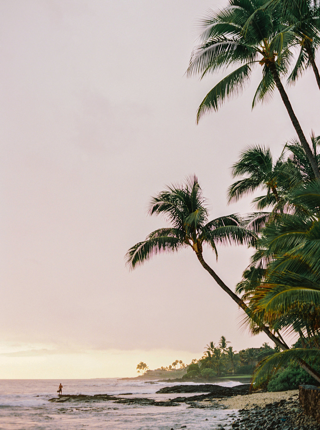 Hawaii Engagement Inspiration from Cottage Hill-2019.jpg
