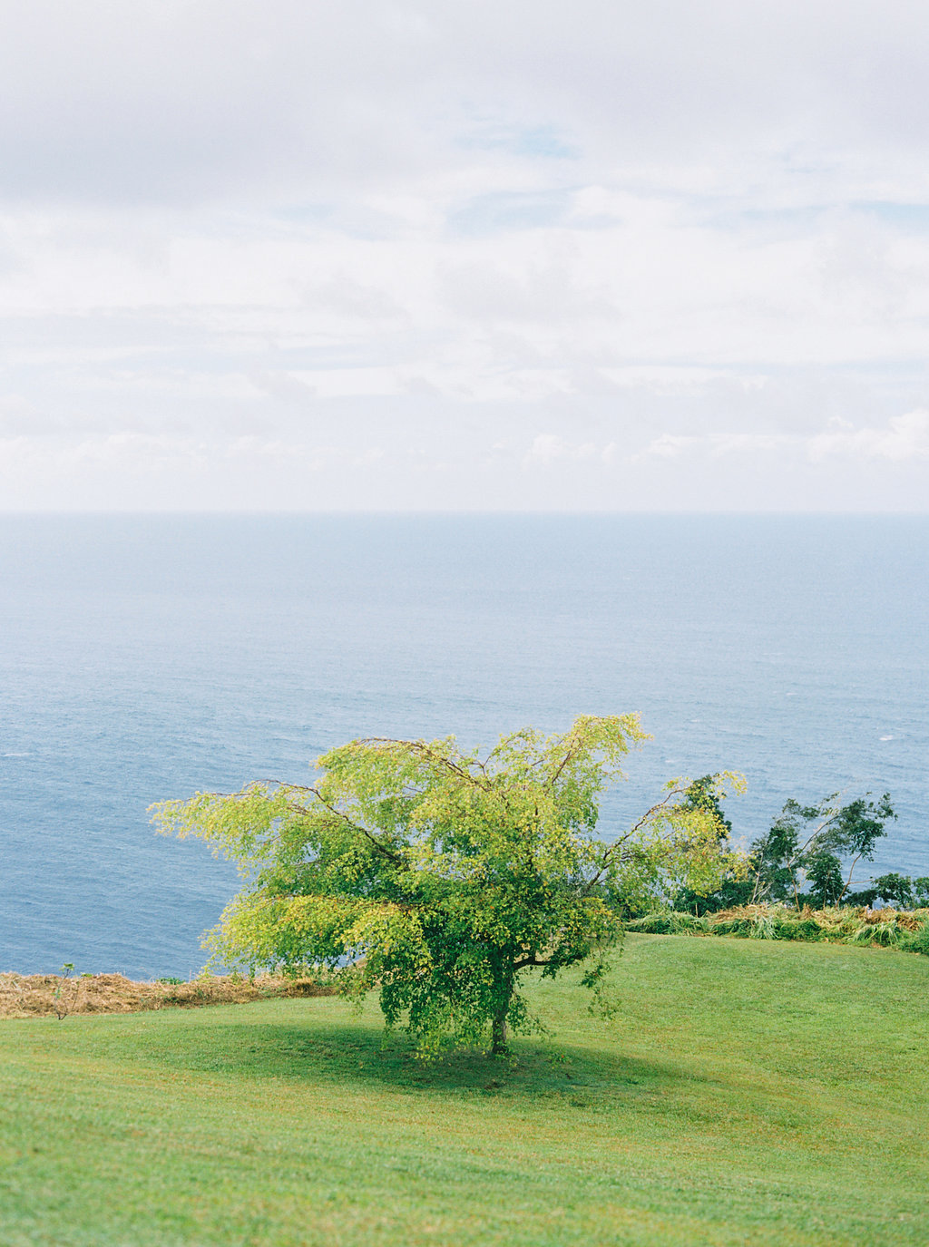 Hawaii Engagement Inspiration from Cottage Hill-2071.jpg