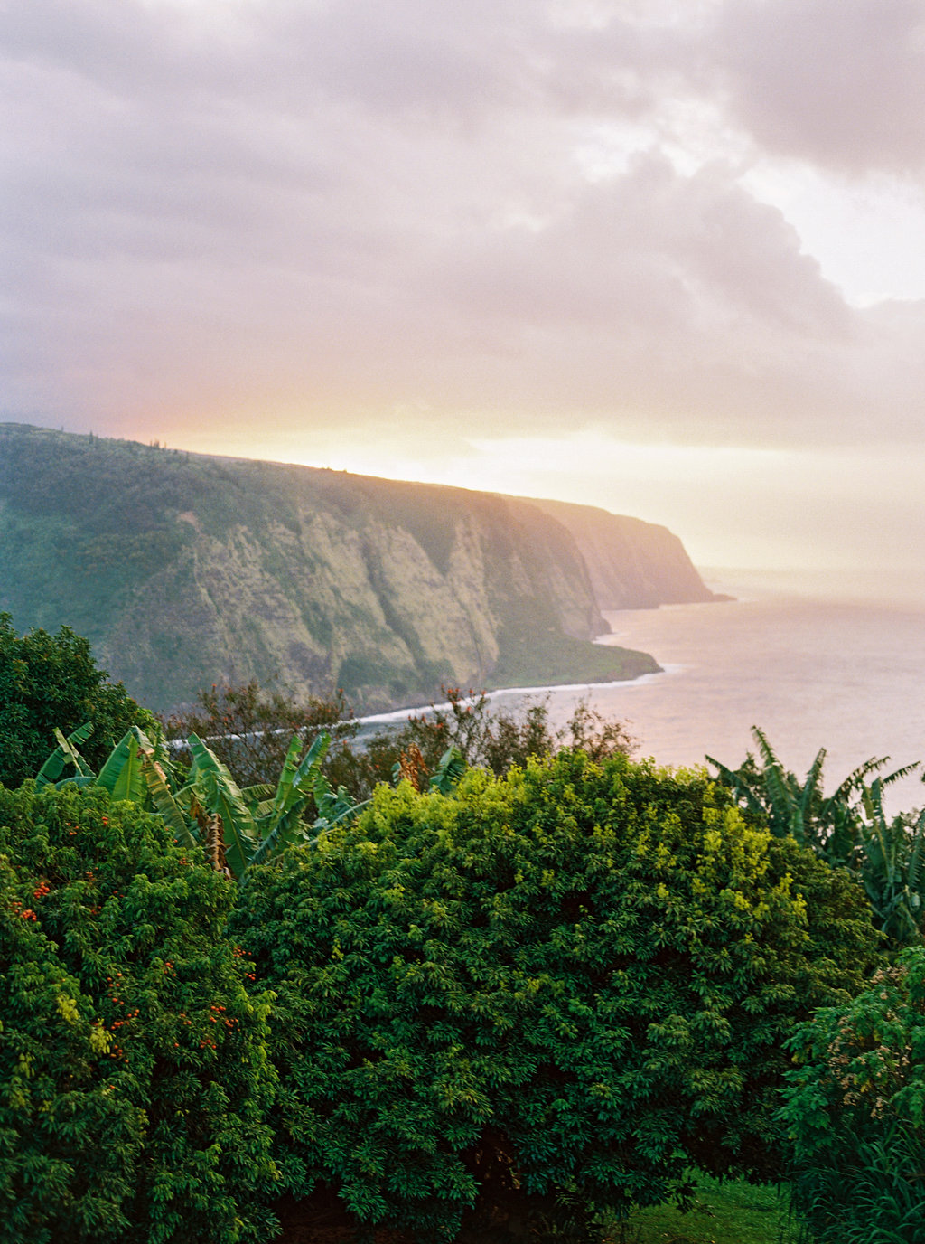 Hawaii Engagement Inspiration from Cottage Hill-2077.jpg
