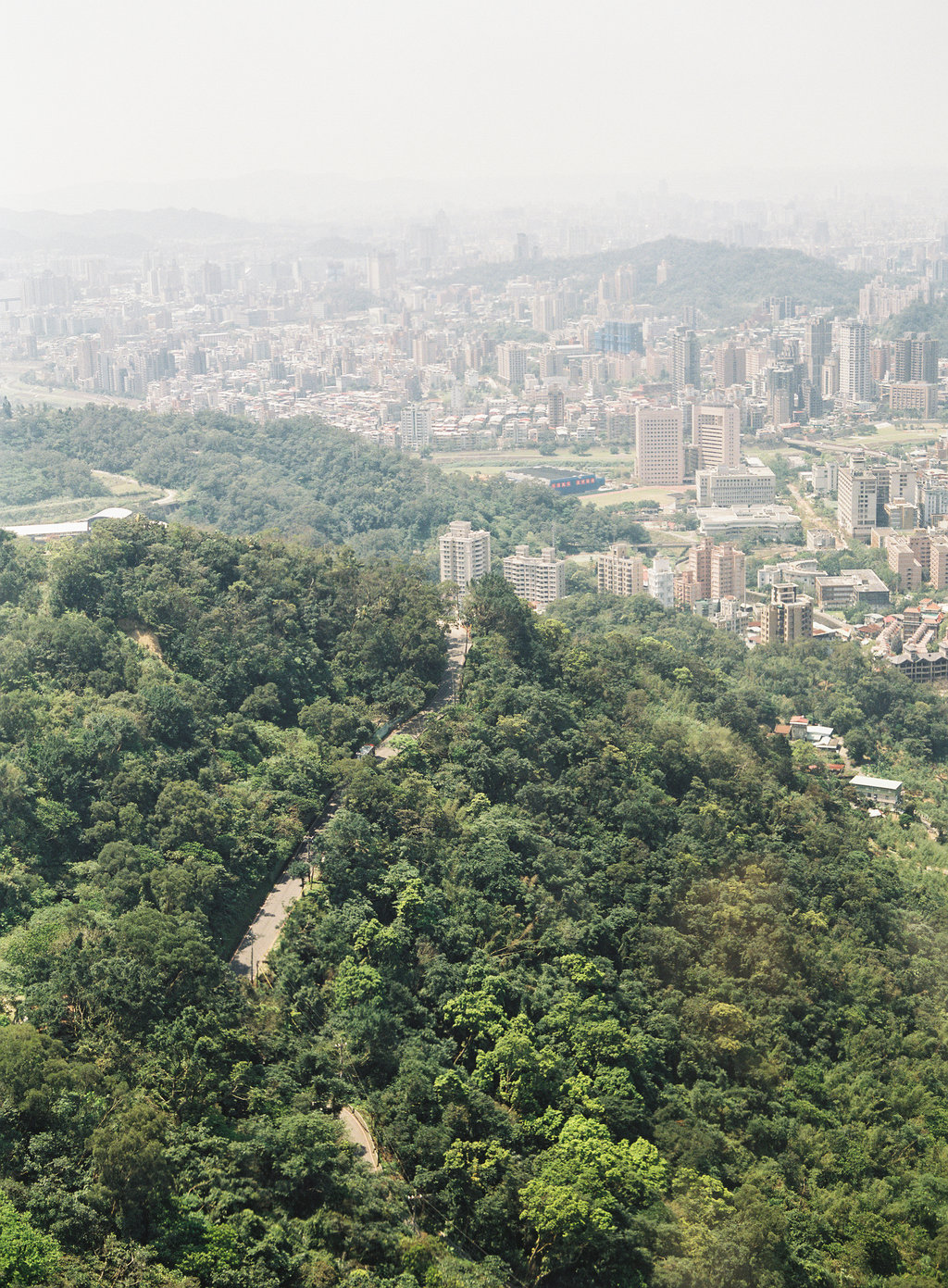 Your Guide to Taiwan now on Cottage Hill1.jpg