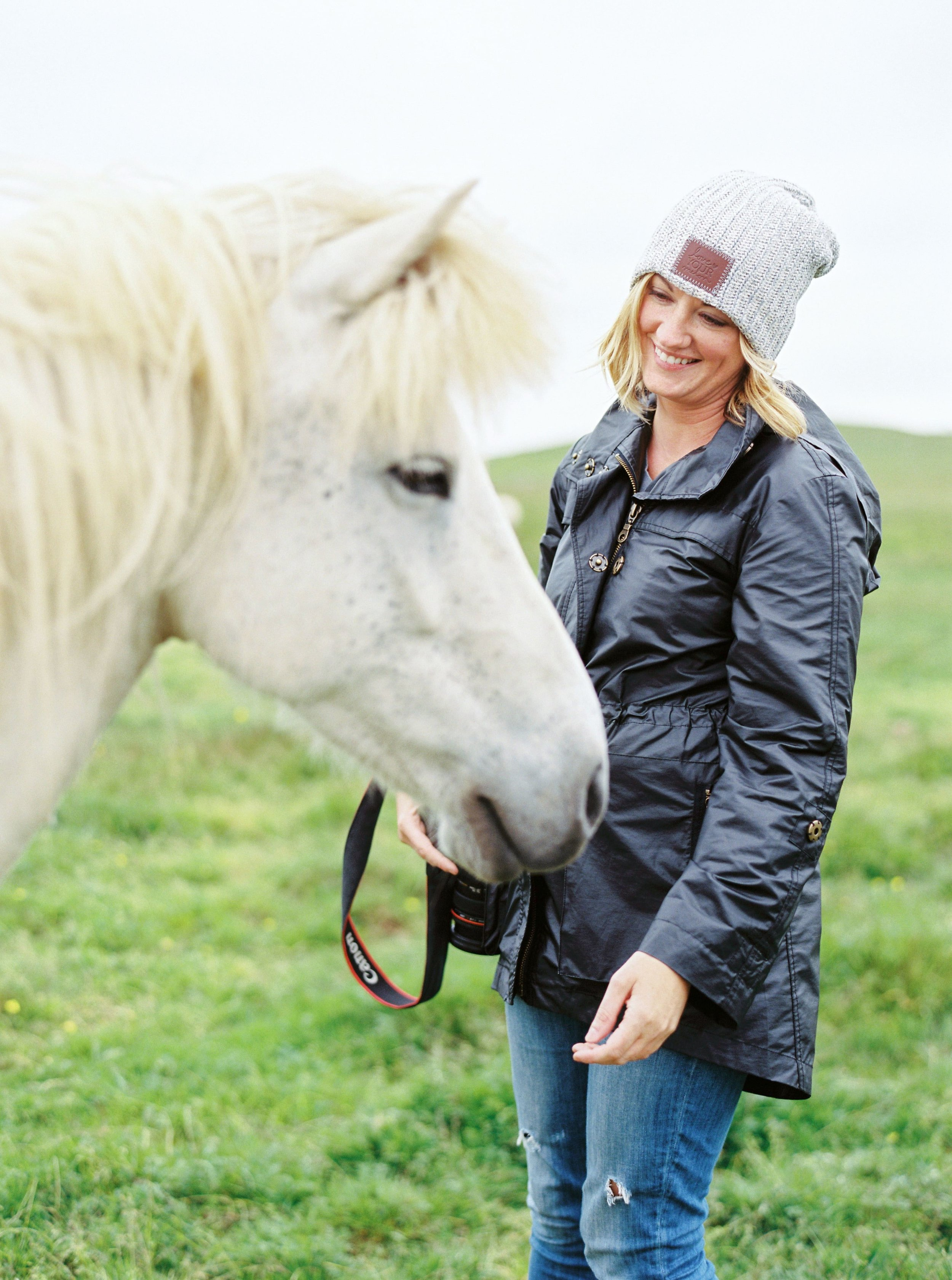 Horses in Iceland by Kristin Sweeting now on Cottage Hill2.jpg