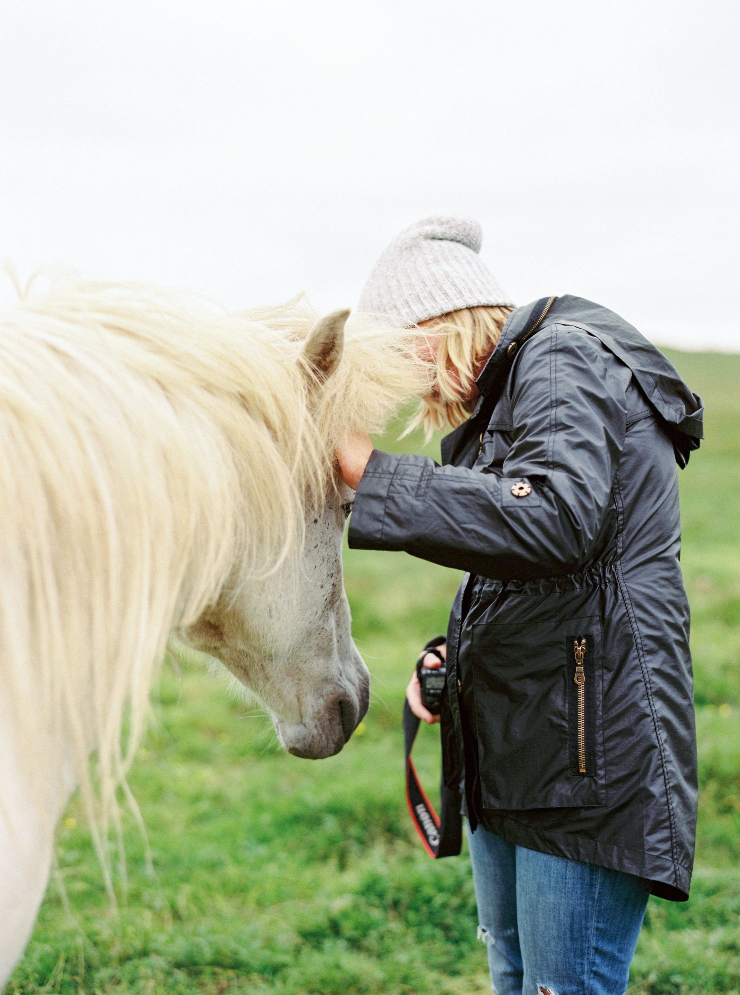 Horses in Iceland by Kristin Sweeting now on Cottage Hill3.jpg