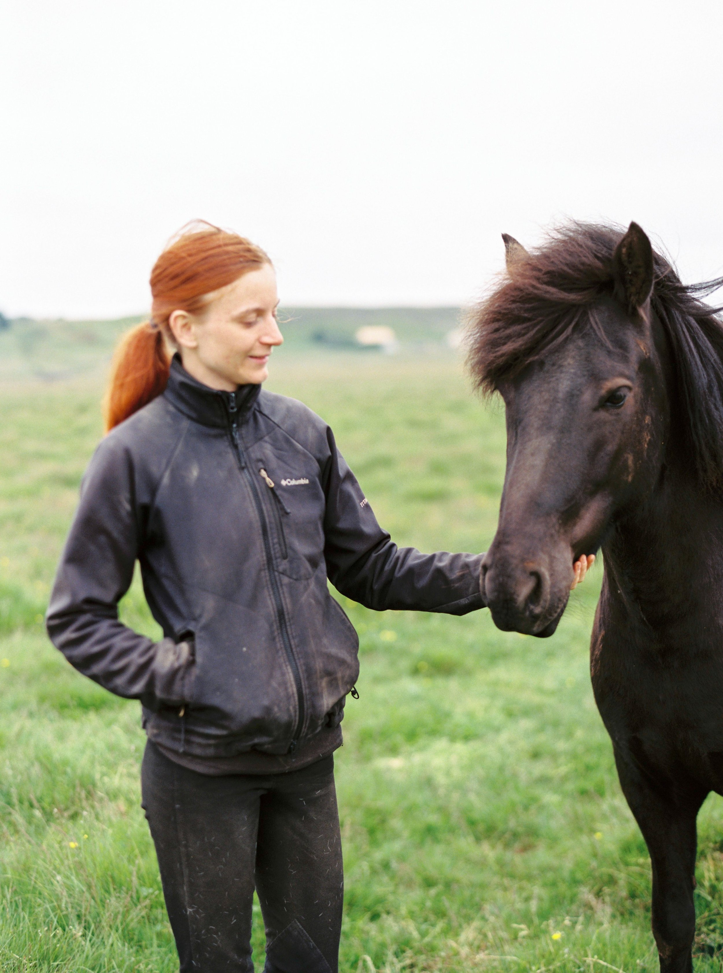 Horses in Iceland by Kristin Sweeting now on Cottage Hill4.jpg