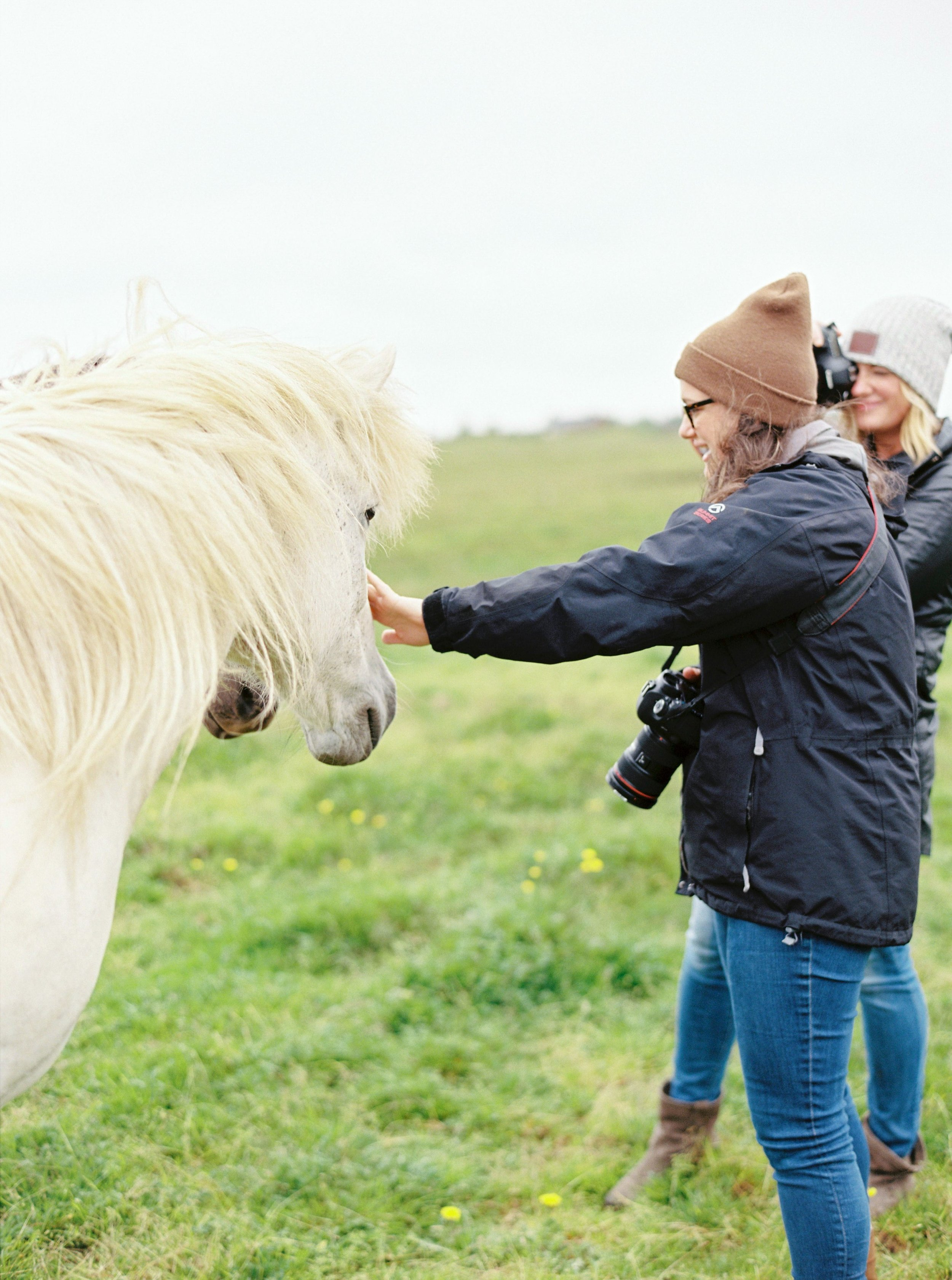 Horses in Iceland by Kristin Sweeting now on Cottage Hill5.jpg