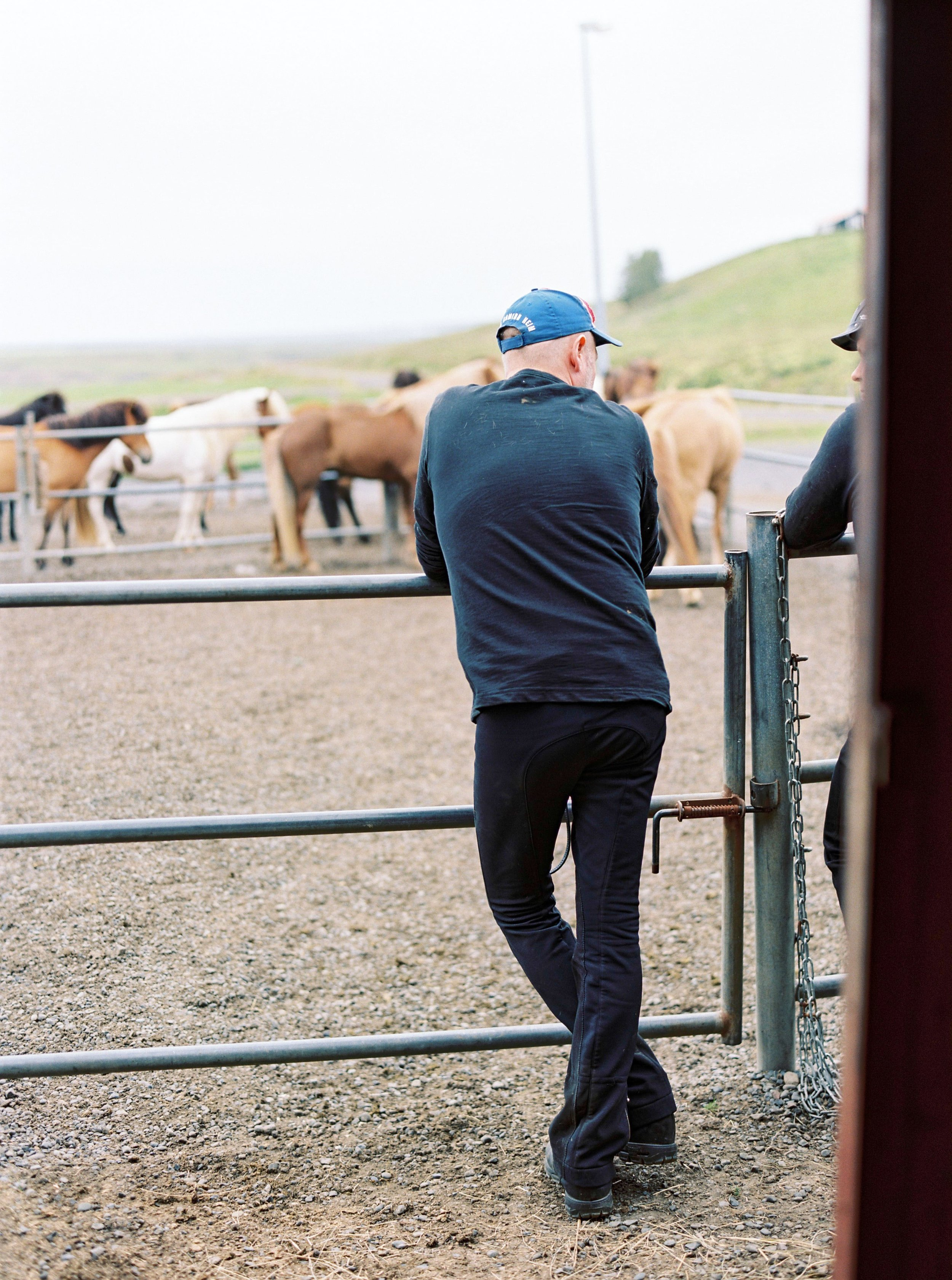 Horses in Iceland by Kristin Sweeting now on Cottage Hill19.jpg