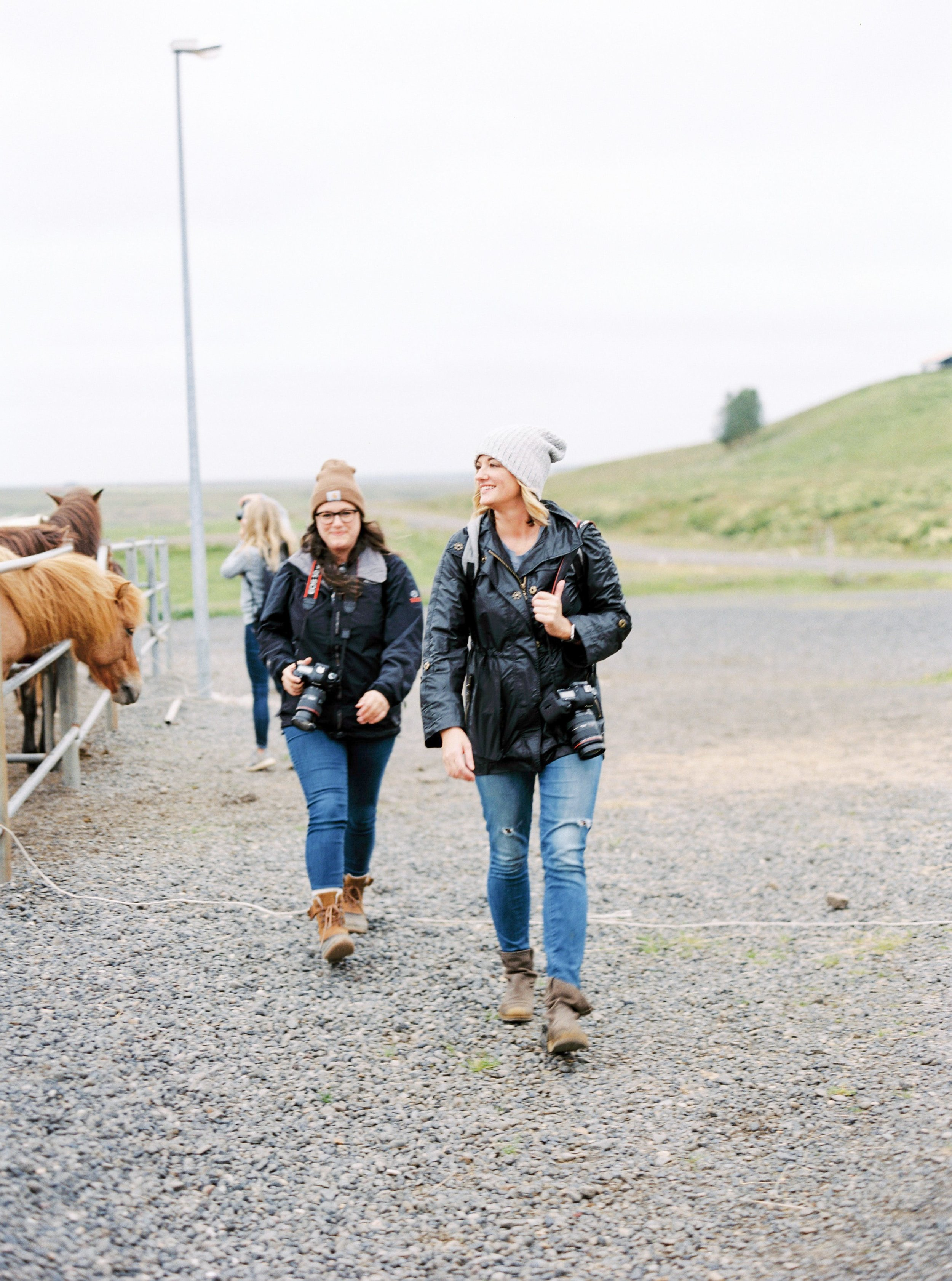 Horses in Iceland by Kristin Sweeting now on Cottage Hill28.jpg