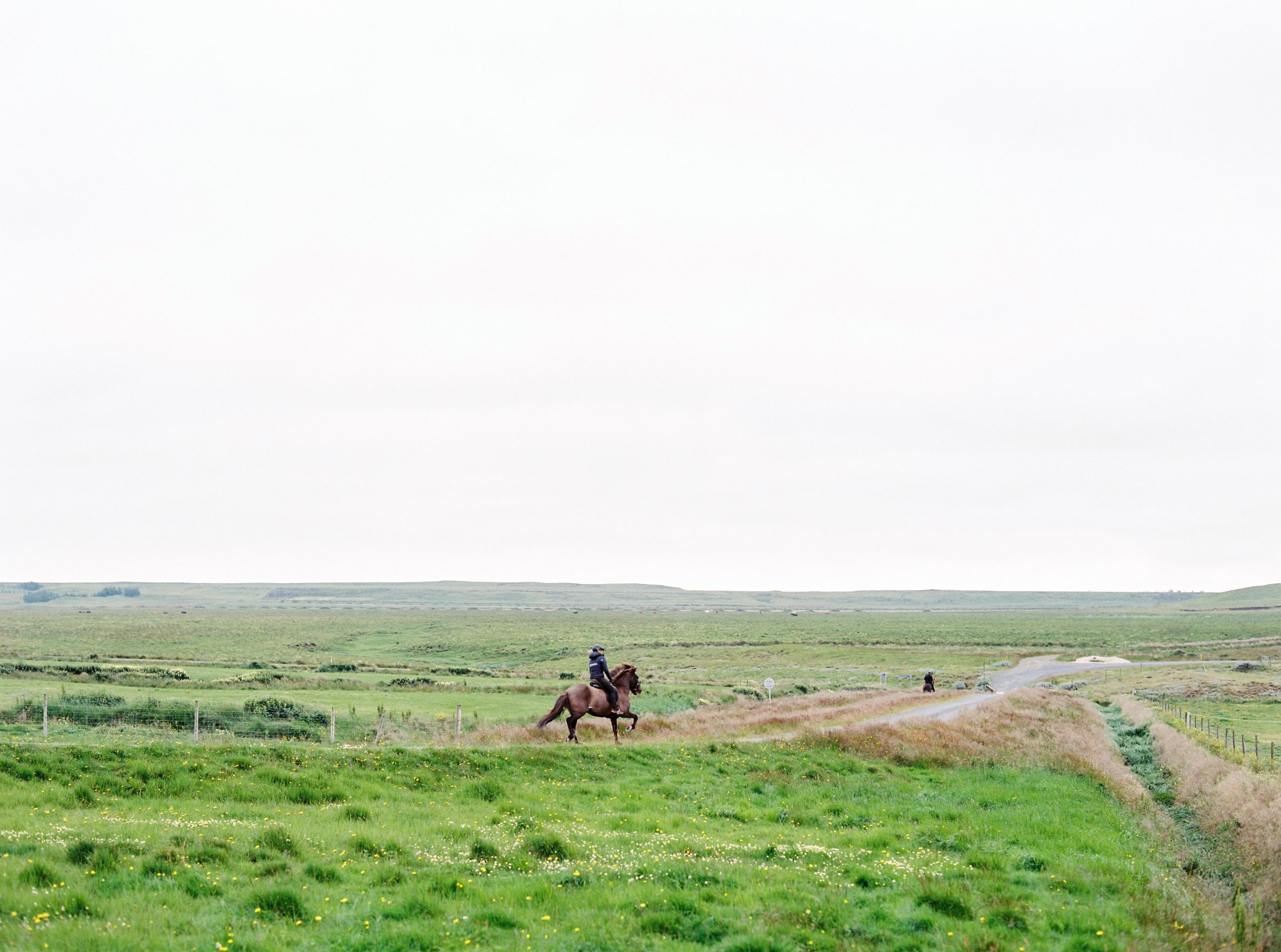 Horses in Iceland by Kristin Sweeting now on Cottage Hill35.jpg