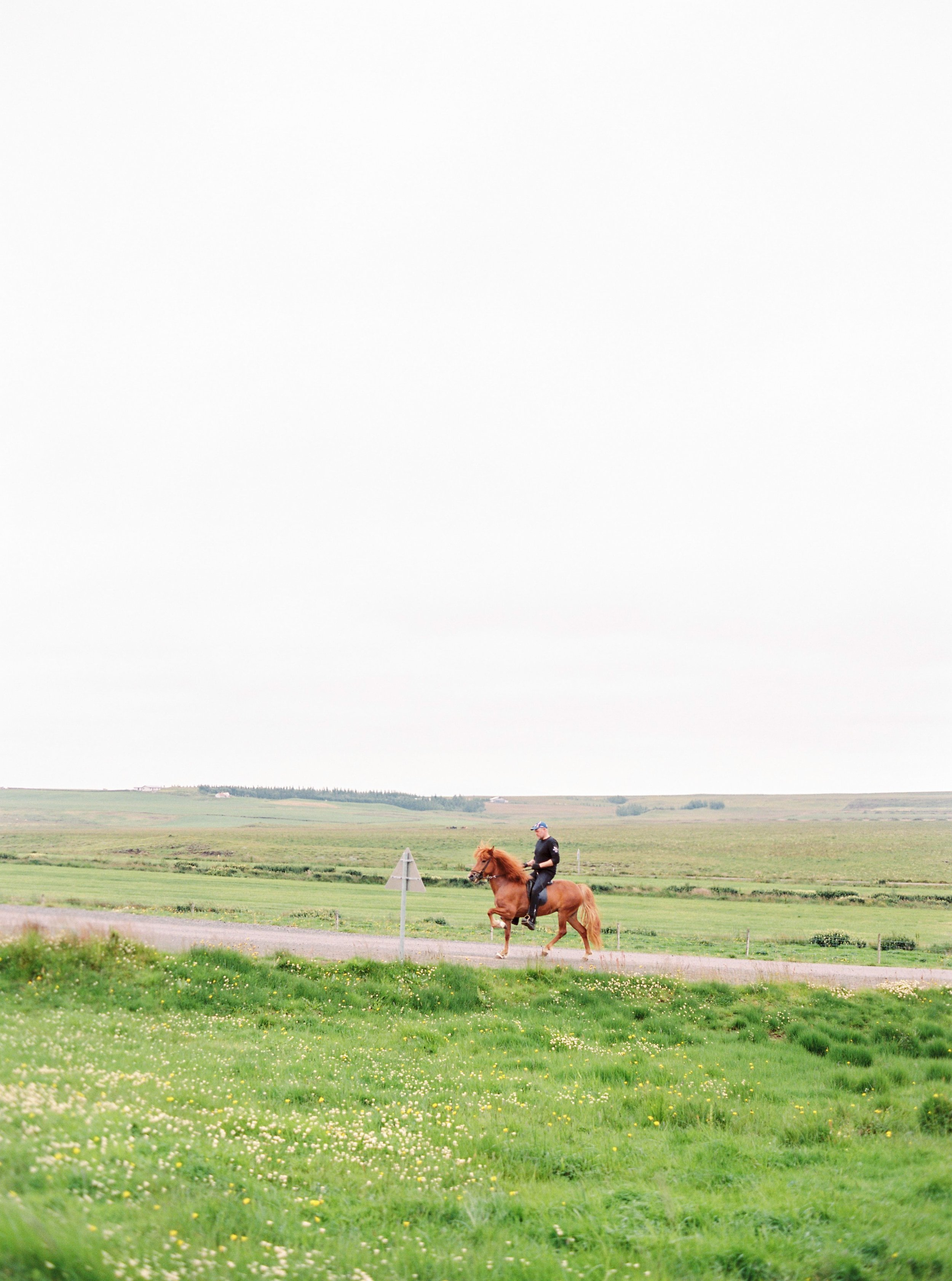 Horses in Iceland by Kristin Sweeting now on Cottage Hill47.jpg
