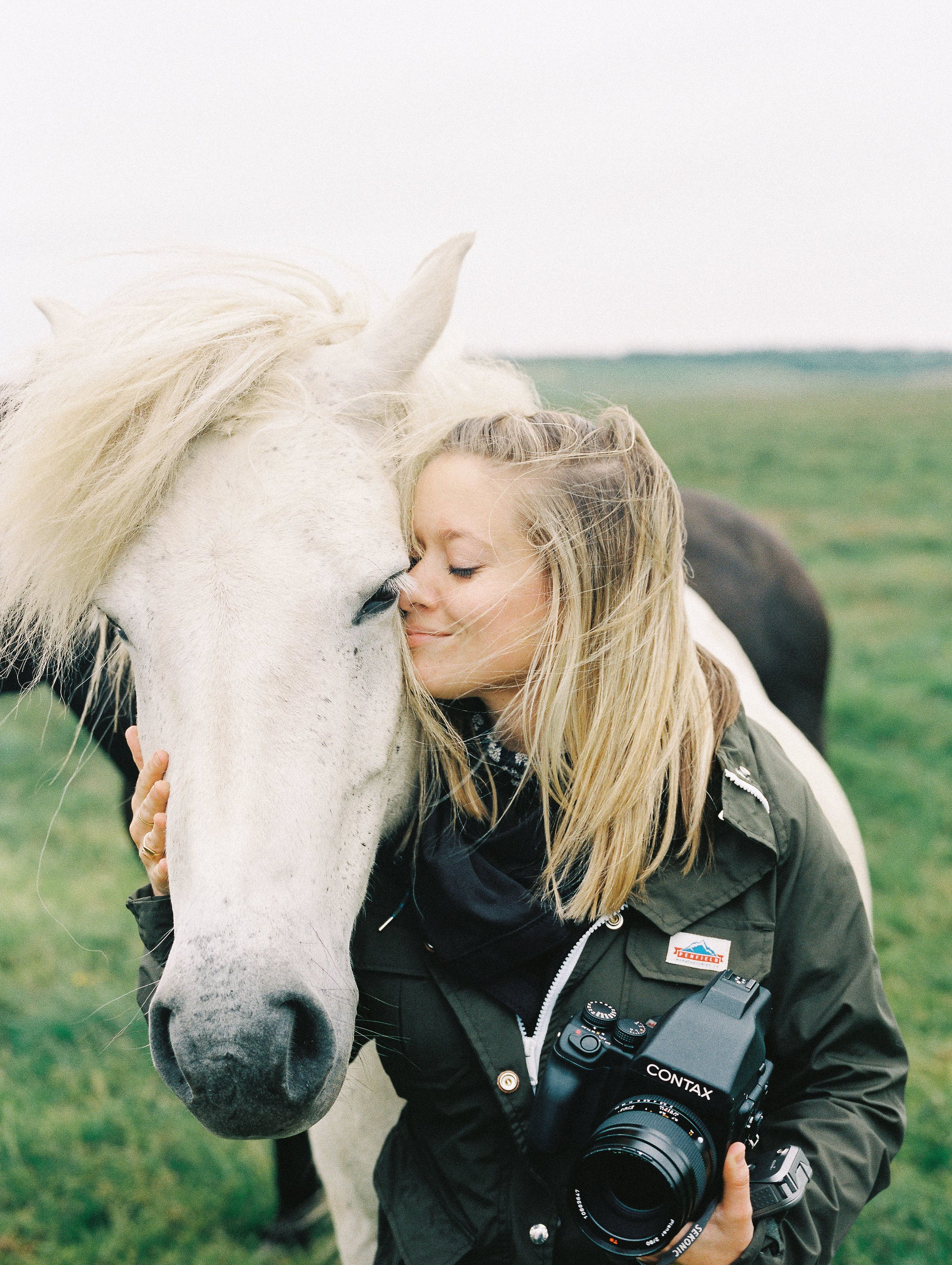 Horses in Iceland by Elli Jane now on Cottage Hill3.jpg