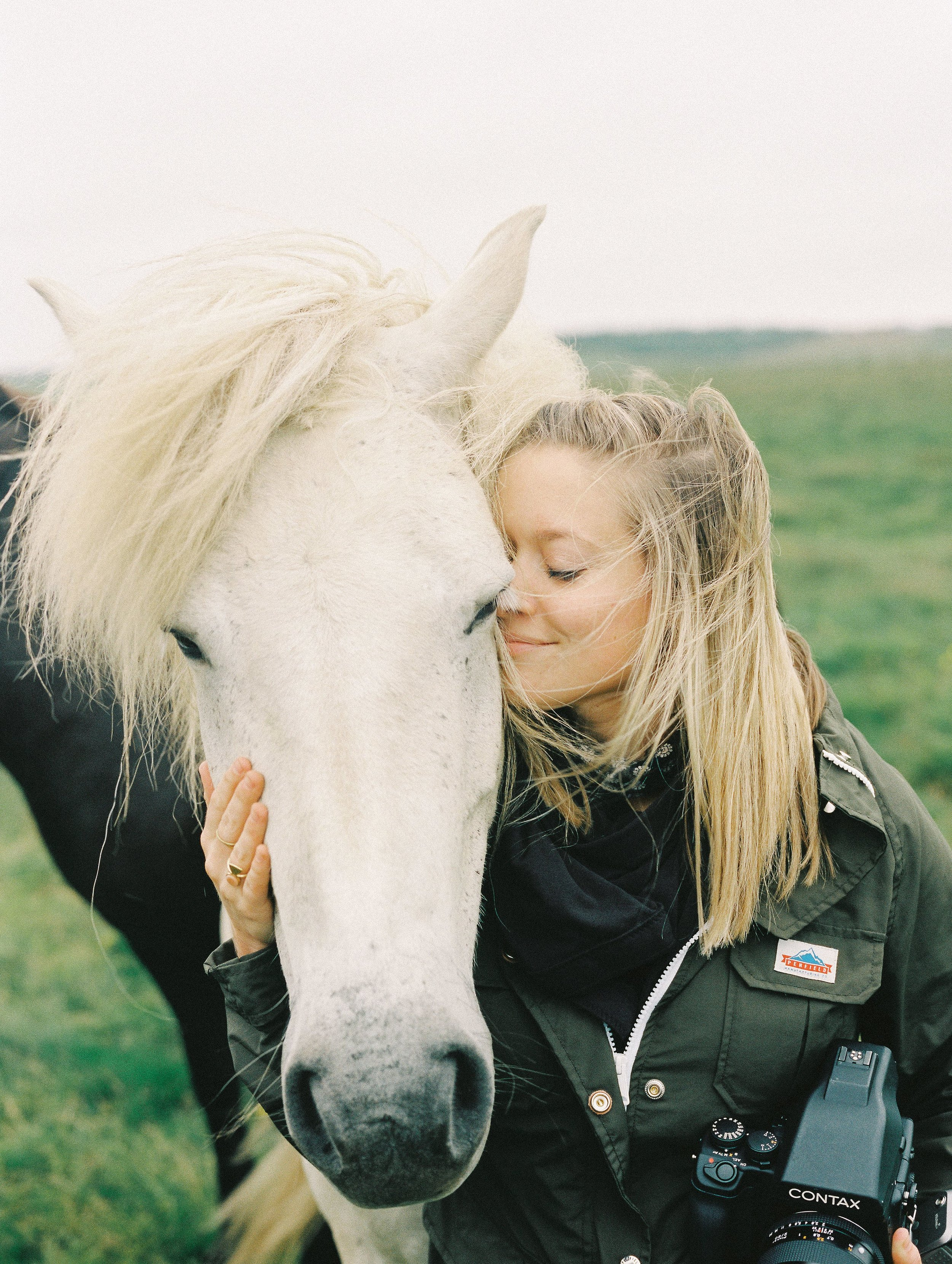Horses in Iceland by Elli Jane now on Cottage Hill4.jpg