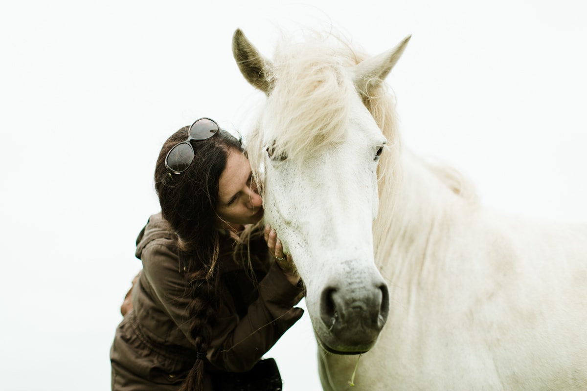 Horses in Iceland by Abigail Lauren now on Cottage Hill20.jpg