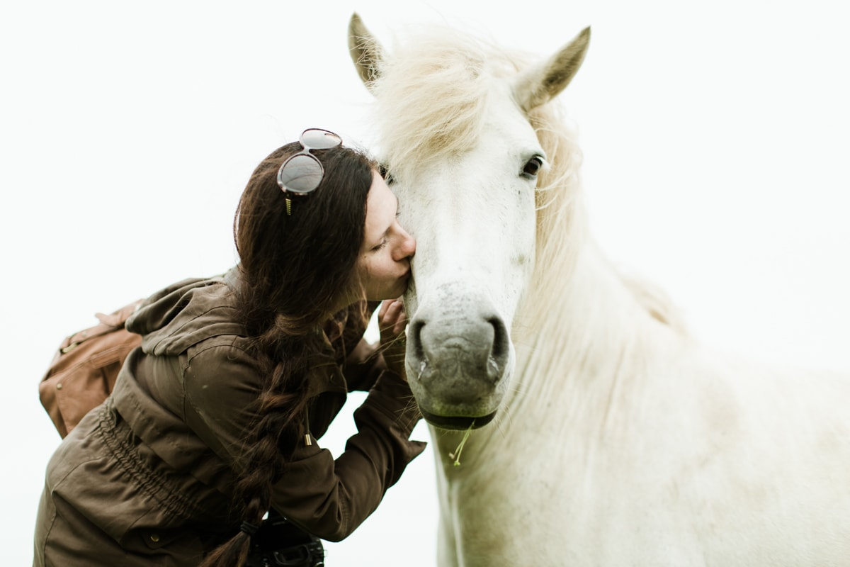 Horses in Iceland by Abigail Lauren now on Cottage Hill21.jpg