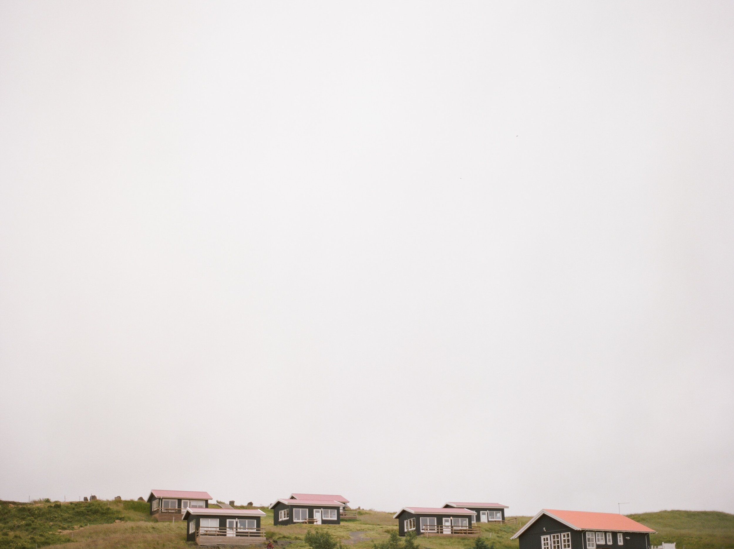 Horses in Iceland by Catherine Taylor now on Cottage Hill7.jpg
