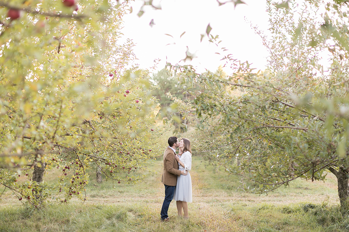 Fall Apple Orchard now on Cottage Hill33.jpg