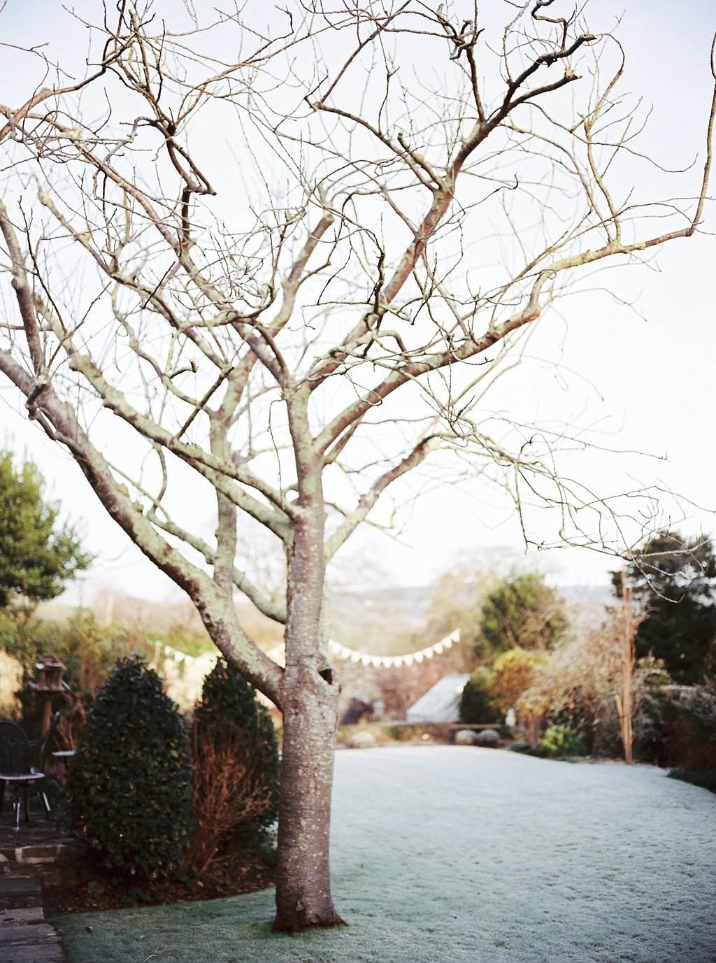 Even in Winter now on cottagehill.co30.jpg