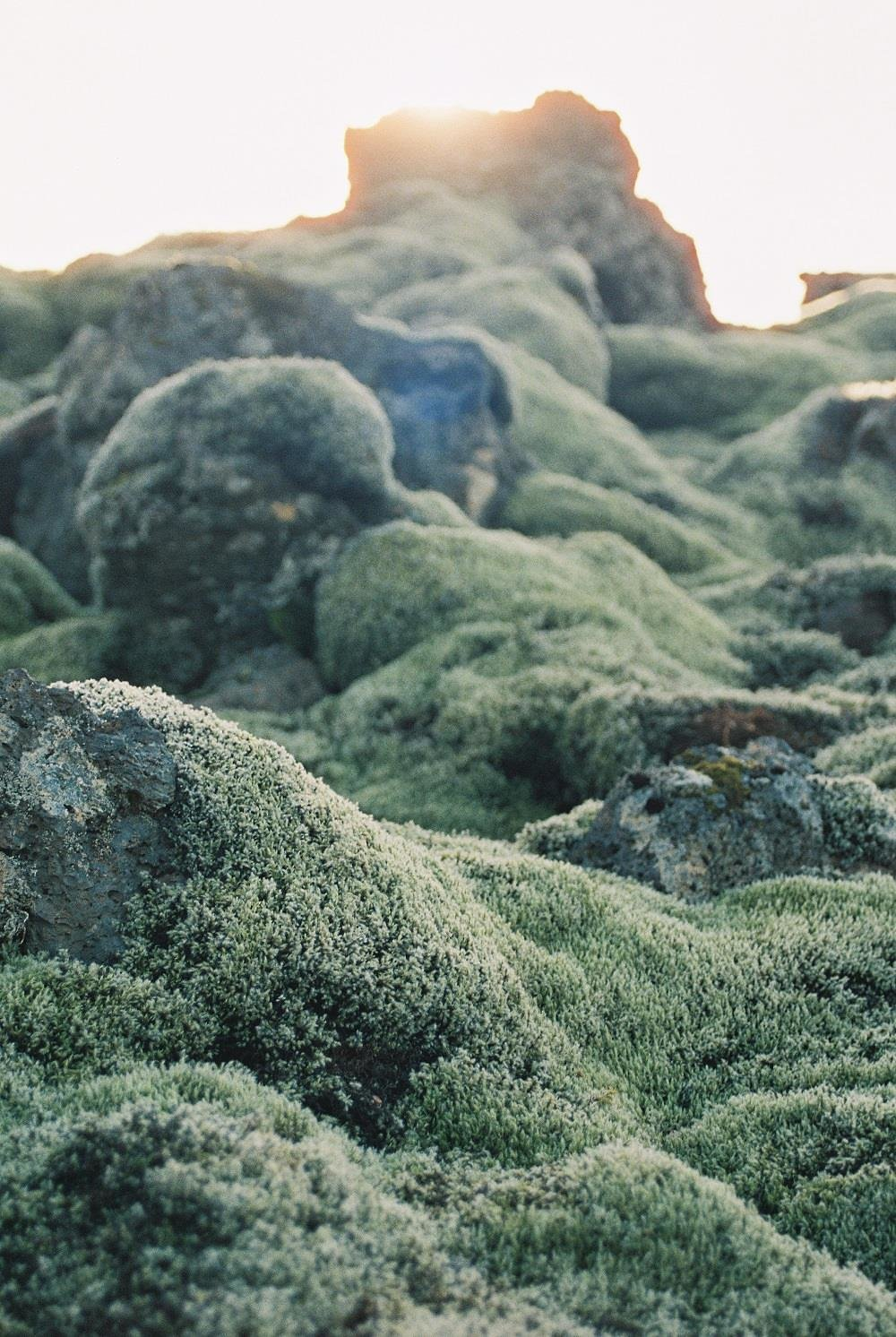 Exploring Iceland on cottagehill.co27.jpg